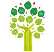 Neonatal Nursing Preceptorship Programme Tree